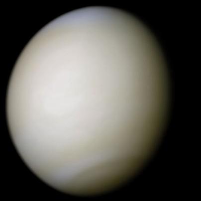 Venus-real